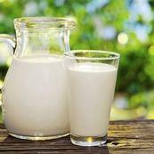 شیر برای استخوان ها مفید است یا مضر؟