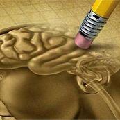 بیماری های مغزی که باعثزوال عقل می شوند