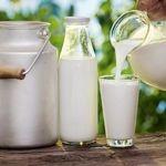 چگونگی ضد عفونی و نگهداری شیر