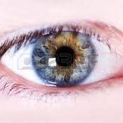 اصول بسیار مهم در زمینه انجام ژیمناستیک چشم ها