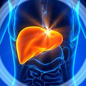 اطلاعاتی در خصوص هپاتیت E و علایم و درمان آن
