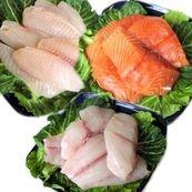 آیا همه ی ماهی ها برای سلامتی مفید هستند؟