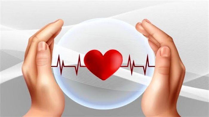 ۶ توصیه طب سنتی ایرانی برای تقویت سیستم ایمنی بدن
