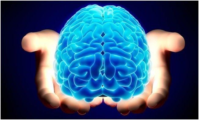 محافظت از مغز در سرما