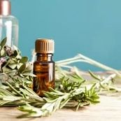 نحوه درمان کورک با استفاده از روغن درخت چای