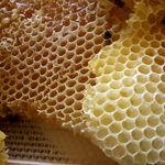 فواید مصرف موم عسل