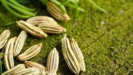 مواد غذایی ضد نفخ و ضد ویروس