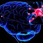 انواع آزمایش های مرتبط با سیستم عصبی(۲)