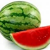 هندوانه سپر محافظتی پوست